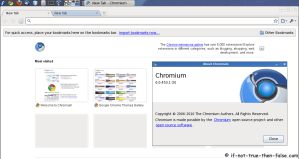 Chromium on Fedora 13 Screenshot