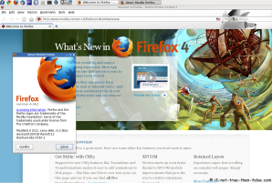 Firefox 4 Running on Fedora 13 Screenshot