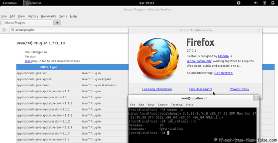 Java 7 Browser Plugin Fedora 18 Firefox 17