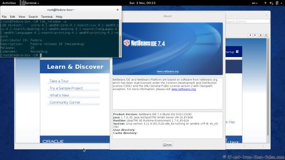 Netbeans IDE 7.4 Running on Fedora 20