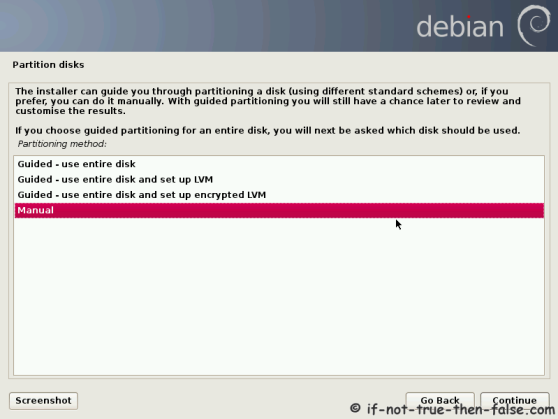 Debian Manual Partition