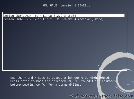 Debian Booting Just Installed Debian System