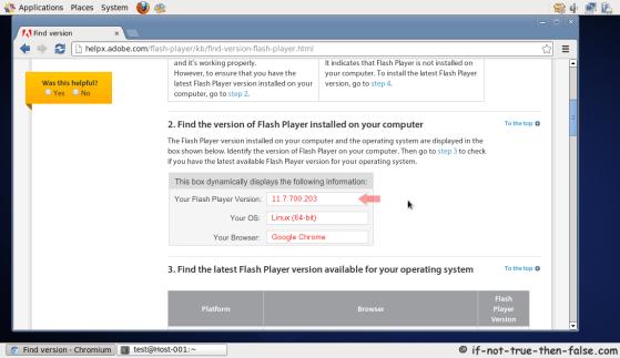 Chromium running on CentOS 6.4 (Adobe Flash Test Page)