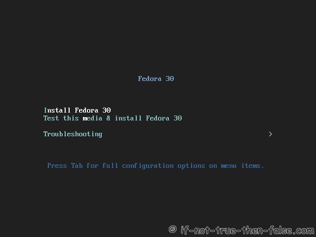 Fedora 30 Server Install Start Installer